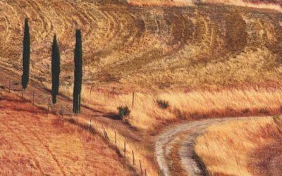 La ricchezza della terra da preservare; nasce il Manifesto per la salvaguardia delle antiche sementi della tradizione italiana