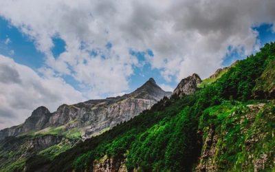 Le alpi formano una corona sempre più verde